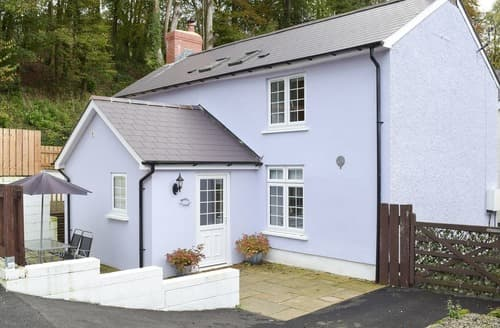 Last Minute Cottages - Delightful Newcastle Emlyn Cottage S124133