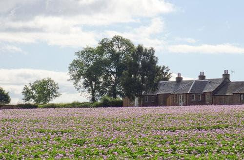 Last Minute Cottages - Gorgeous Blairgowrie Cottage S69726