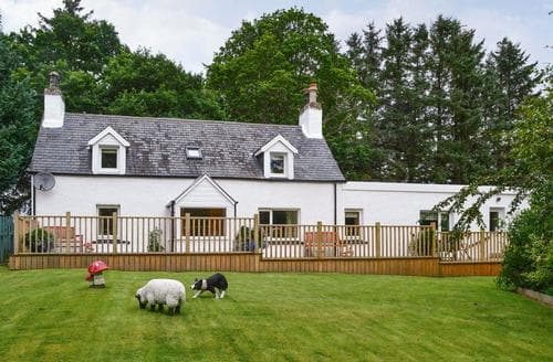 Big Cottages - Excellent Dornoch Cottage S70387