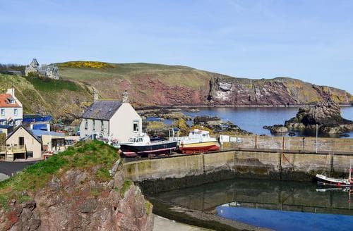 Dog Friendly Cottages - Luxury Eyemouth Cottage S79763