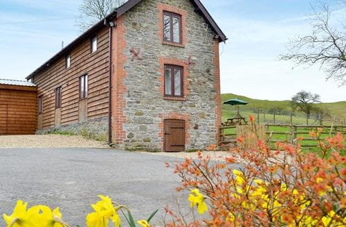 Dog Friendly Cottages - Attractive Llandrindod Wells Cottage S78247
