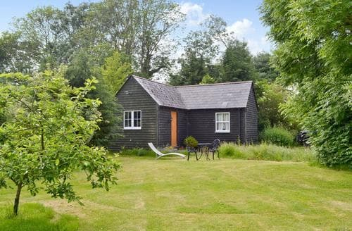Last Minute Cottages - Attractive Ringwood Lodge S58177