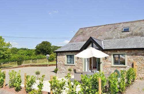 Dog Friendly Cottages - Attractive Llandeilo Cottage S69836