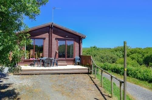 Big Cottages - Beautiful Hartland Lodge S19109