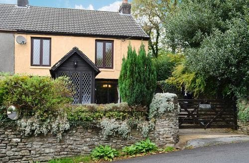 Big Cottages - Cosy Swansea Cottage S21790