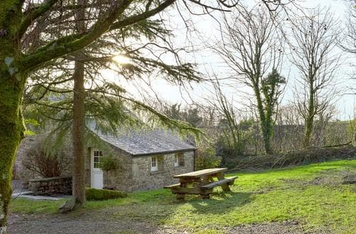Last Minute Cottages - Beautiful Narberth Cottage S21894