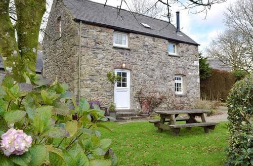 Big Cottages - Superb Narberth Cottage S21887