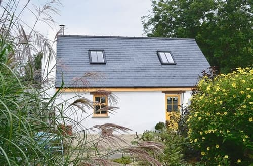 Last Minute Cottages - Delightful Llandovery Cottage S21711