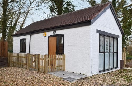 Last Minute Cottages - Wonderful Arundel Lodge S44655