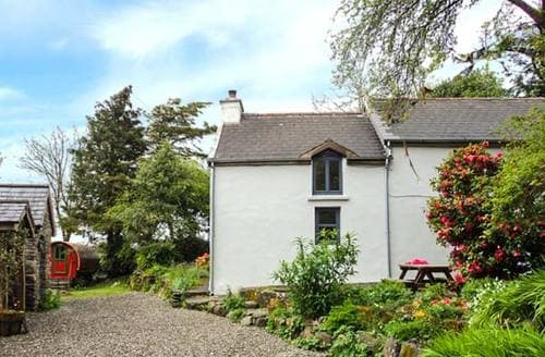 Last Minute Cottages - Luxury Bandon Cottage S37181