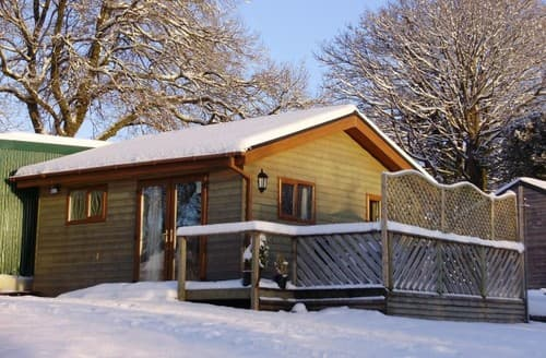 Last Minute Cottages - Swansea Log Cabin S131430