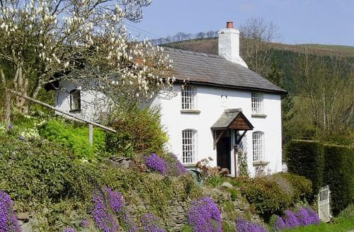 Last Minute Cottages - Wonderful Kington Cottage S16919
