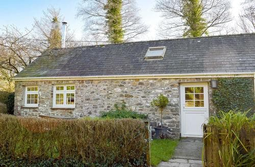 Last Minute Cottages - Cosy Narberth Cottage S21886