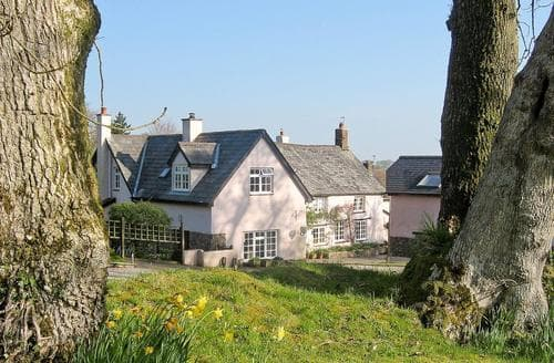 Last Minute Cottages - Excellent Okehampton Cottage S19560