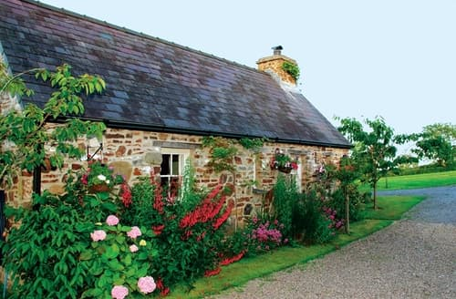 Last Minute Cottages - Primrose Cottage - HW7100