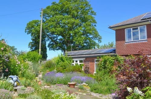 Last Minute Cottages - Wonderful Ledbury Cottage S16949