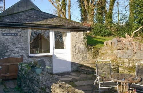 Last Minute Cottages - Bwythn Bach