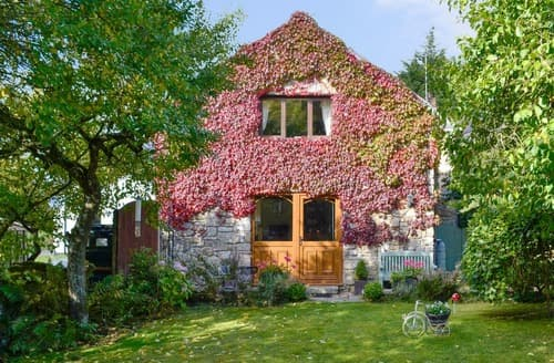 Last Minute Cottages - Bryn Dedwydd Cottage