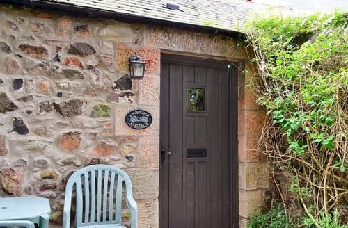 Last Minute Cottages - Lavender Cottage-MGG