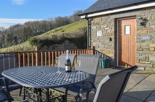 Last Minute Cottages - Lovely Aberaeron Cottage S25027