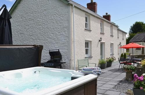 Last Minute Cottages - Delightful Llandeilo Cottage S25031