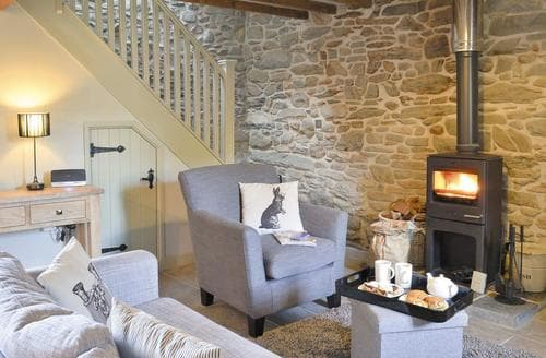 Last Minute Cottages - Ivy Bush Cottage