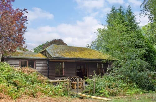 Last Minute Cottages - Adorable Ringwood Lodge S14130
