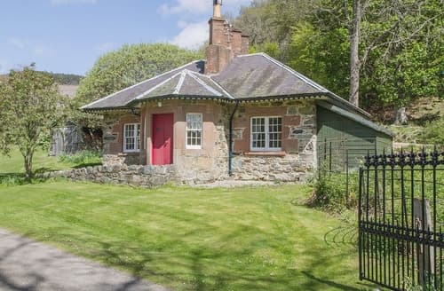 Last Minute Cottages - Excellent Brechin Lodge S22942