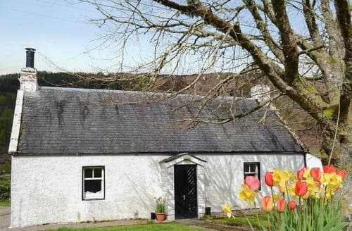 Last Minute Cottages - Stunning Fort Augustus Cottage S22696