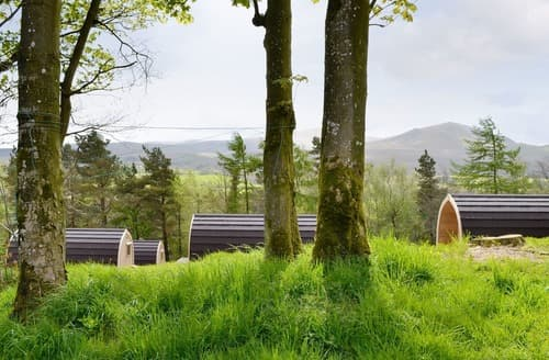Last Minute Cottages - Adorable Matterdale End Lodge S101297