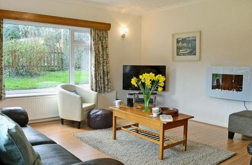 Last Minute Cottages - Llawyrglyn