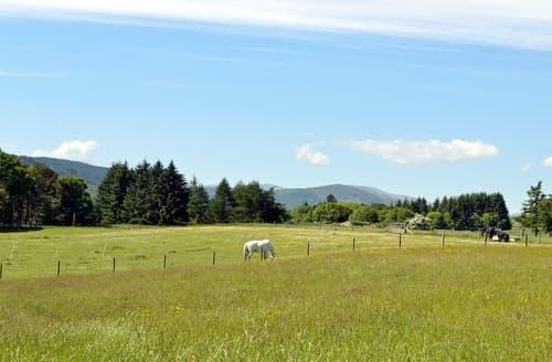 Last Minute Cottages - Quaint Pitlochry Lodge S105311