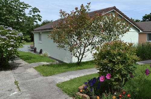 Last Minute Cottages - Tasteful Holsworthy Cottage S79874