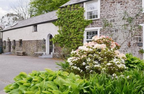 Last Minute Cottages - Splendid Holsworthy Cottage S80932