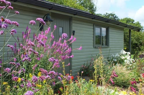 Last Minute Cottages - The Potting Shed