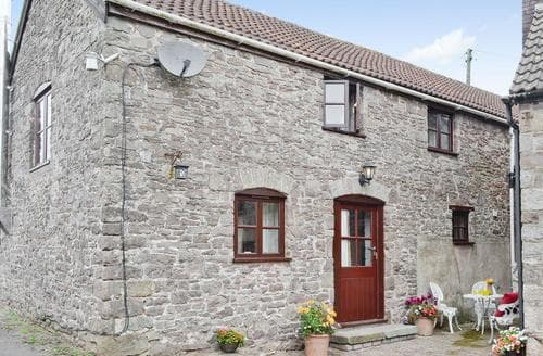 Dog Friendly Cottages - Wonderful Lydney Cottage S67669
