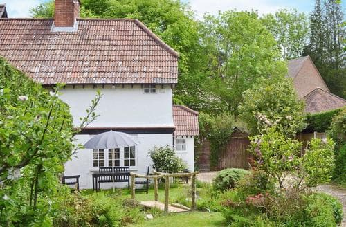 Last Minute Cottages - Lovely Burley Cottage S57414
