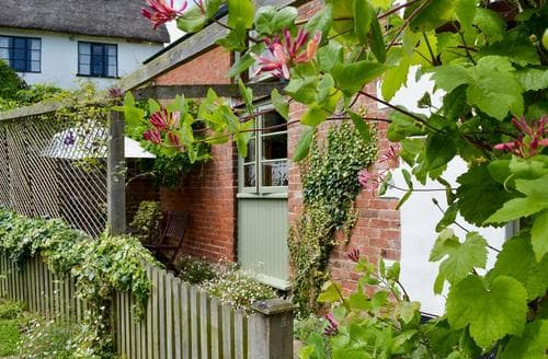 Last Minute Cottages - Superb Honiton Cottage S18795