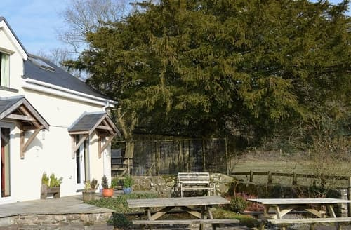 Last Minute Cottages - Ty Newydd Cottage