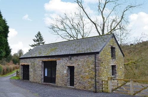 Last Minute Cottages - Captivating Llandovery Cottage S21725