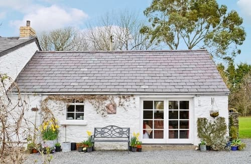 Last Minute Cottages - Gorgeous Aberaeron Cottage S21476