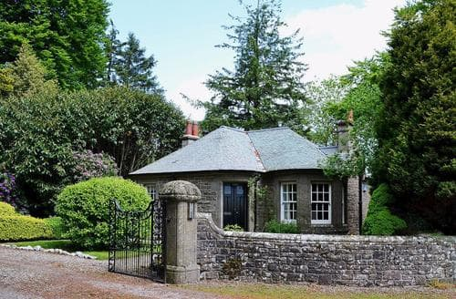 Last Minute Cottages - Tasteful Brechin Lodge S59104
