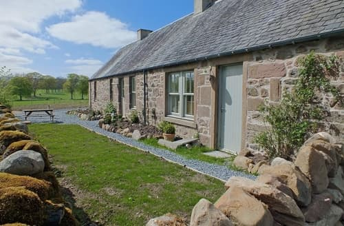 Last Minute Cottages - Lovely Perth Cottage S23403