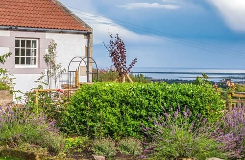 Last Minute Cottages - Quaint St Andrews Cottage S125339
