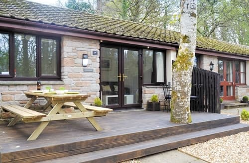 Last Minute Cottages - Charming St Ives Lodge S21336