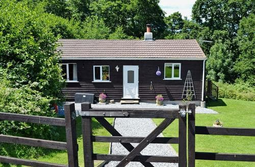 Last Minute Cottages - Hazelnut Lodge
