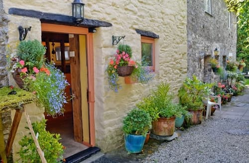 Last Minute Cottages - Cosy Buckfastleigh Cottage S19544