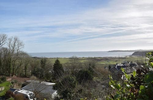 Dog Friendly Cottages - Captivating Tenby Cottage S25392