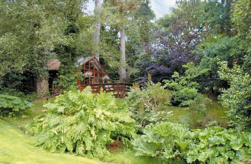 Last Minute Cottages - Forest Lodge