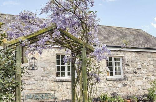 Last Minute Cottages - Lovely Denbigh Llwyn S5299